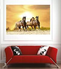 Affiche poster décoration murale Chevaux réf 66128902 (6 dimensions)