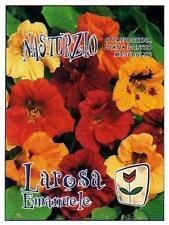 5 Semi/Seeds NASTURZIO Nana  (Trapaeolum Mayus) Mix