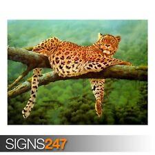 Leoparden Leopard (3601) Animale POSTER-Foto Poster Arte Stampa A0 A1 A2 A3 A4