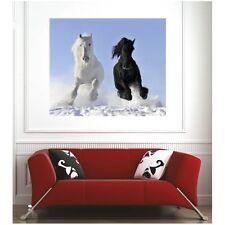 Affiche poster chevaux 3252550 3252550 Art déco Stickers