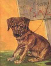 German Shepherd Puppy - Dog Print - Diana Thorne