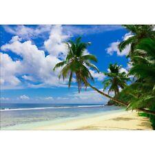 Stickers muraux déco : plage palmiers 1516