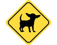 Chihuahua Warnschild Warndreieck Aufkleber Achtung Vorsicht Hund