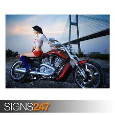 Harley Davidson (AC354) Bicicleta Poster-FOTOS arte cartel impresión A0 a A4