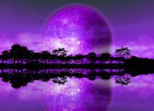 254x183cm Grand Papier peint photo mural violet ciel Alien planète