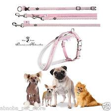 Modern Art Dog Princess Baby Rosa Nylon Collare e conduce taglie XXXS-L