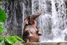 Fototapete selbstklebend Elefant badet unter Wasserfall - Made in Germany Tapete