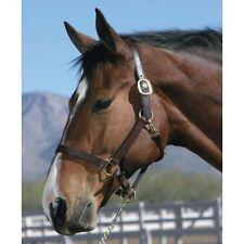 PREMIUM LEATHER HORSE HALTER HEAD COLLAR DARK BROWN, BLACK, MEDIUM BROWN ALL SZ