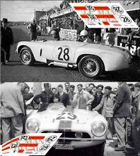 Calcas Pegaso Z102 spider Le Mans 1953 28 29 1:32 1:24 1:43 1:18 ENASA decals