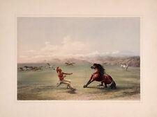 "Catlin American Indian Portfolio : ""Catching Wild Horse"" (1844) — Fine Art Print"