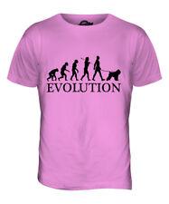 Bouvier Des Flandres Evolution Of Man Mens T-Shirt Tee Top Dog Gift Walker