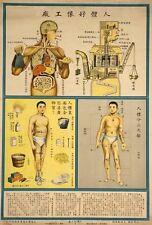 Cuadro médico chino década de 1930 hombre como máquina cuerpo funciones A3 cartel impresión de arte