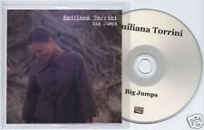 EMILIANA TORRINI Big Jumps UK promo test CD titled insert