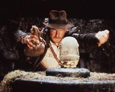 Harrison Ford [Indiana Jones] Profesional 20.3cmx25.4cm 25.4cmx20.3cm Foto