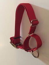 CARTER PET SUPPLY 1.5 Martingale Dog Collar Training/Walking DOUBLE BAR BUCKLE
