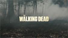2017 Topps Walking Dead Season 6 #1-100 & Inserts : PICK SINGLES FROM DROP LIST