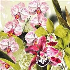 Orchid Tile Backsplash Laura Mysak Floral Art Strip Ceramic Tile LM2-008