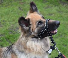 Riflettente collare imbottito testa addestramento del cane cane Halter fermate Trazione