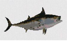 Bonito Fish  Needlepoint Kit or Canvas (Animal)