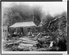 Photo Settler #39 s homestead New Zealand
