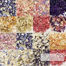 Delphinium Confetti Petals Biodegradable Natural Wedding - 23 Colours