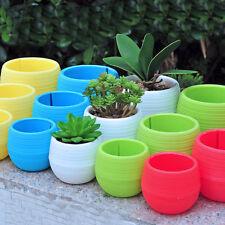 5 Colourful Mini Round Plastic Plant Flower Pot Garden Home Office Decor Planter