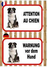 Border Collie Beware of the Dog Sign ATTENTION AU CHIEN  WARNUNG VOR DEM HUND
