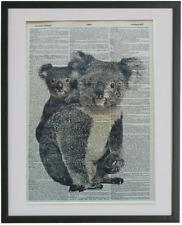 Koala Print No.443, koala posters, dictionary art, animal prints