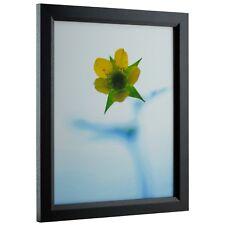 Craig Frames Economy Black, Simple Hardwood Picture Frame, Panoramic Sizes