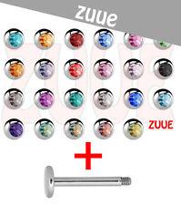 De 6 Mm X 1,6 Mm Labret oreja tragus bares con una gran elección de color gemmed Bolas De Labios