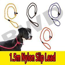 Leash Dog Slip Lead Rope Nylon Collar Training Pet Strap Adjustable Lead
