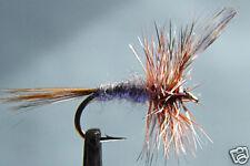 10x Mouche Sèche Adams H14/16/18/20/22 fliegen mosca
