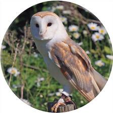 'Barn Owl' Button Pin Badges (BB014394)