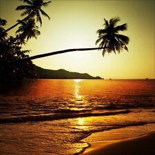 Stickers muraux déco : palmiers coucher de soleil 1210