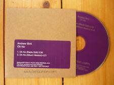 Andrew Bird Noble Beast album versione/Radio Edit