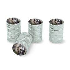 Border Collies Window Dogs Tire Rim Wheel Aluminum Valve Stem Caps