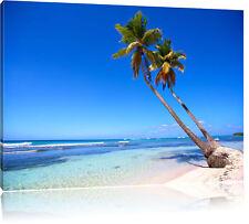 Palmen am Meer Leinwandbild Wanddeko Kunstdruck