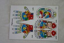 Reflexzonen Schautafel Übersicht Tafel Hand, Fuß, Ohr, Iris, Laminiert A3, A4-A7