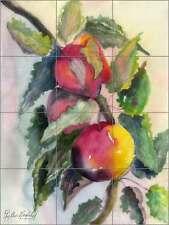 Ceramic Tile Mural Backsplash Neufeld Fruit Apple Kitchen Art PNA001