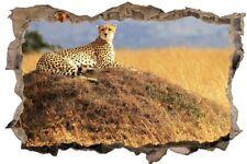 Gepard auf Hügel Afrika Savanne Wandtattoo Wandsticker Wandaufkleber D0290