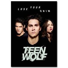 141754 Teen Wolf American TV Series Wall Print Poster UK