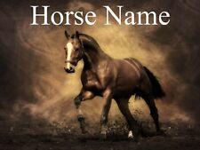 Personalised Horse Pony Name Metal Aluminium Sign Stable Door Plaque 197x141mm