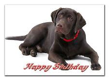 C103; gran tarjeta de cumpleaños personalizada; hecho a medida para cualquier nombre; Choc Perro de laboratorio