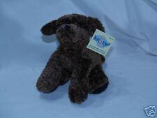 Kookeys Brown Dog Pre-Registered KOOFOUNDER 10k KooKoin