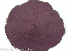Acai Berry puro estratto di Frutta in polvere (10:1) - grado farmaceutico (PALMA açaí)