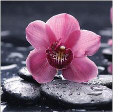 Sticker déco Galet Zen Fleur Réf 519 - 16 dimensions - Sticker mural