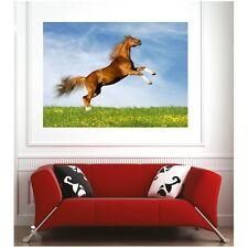 Affiche poster saut de cheval  9037561 Art déco Stickers