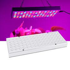 1000W 75 LED Hydroponic Plant Grow Light Lighting Panel Growth Lamp Greenhouse