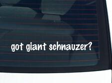 got giant schnauzer? DOG BREED DOGS FUNNY DECAL STICKER ART WALL CAR CUTE