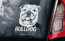 Bulldog on Board - Car Window Sticker -British English Bully Dog Sign Decal -V02